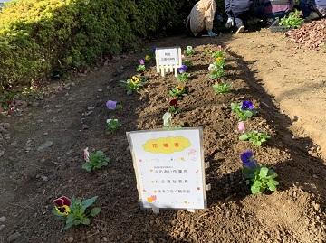花壇令和元年.jpg